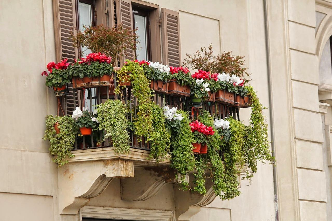 Balkonkästen bepflanzen Tipps