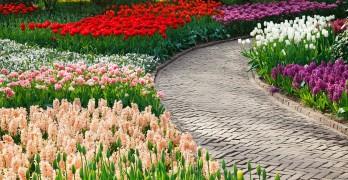 Gartenweg gestalten – Tipps und Ideen
