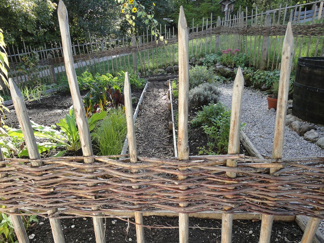 Kräutergarten anlegen Tipps und Tricks