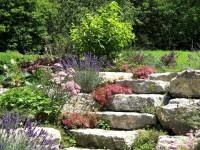 Steingarten anlegen – Tipps und Ideen