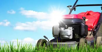Gartenarbeit im März – das ist zu tun