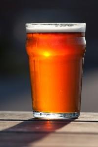 bier gegen ameisen