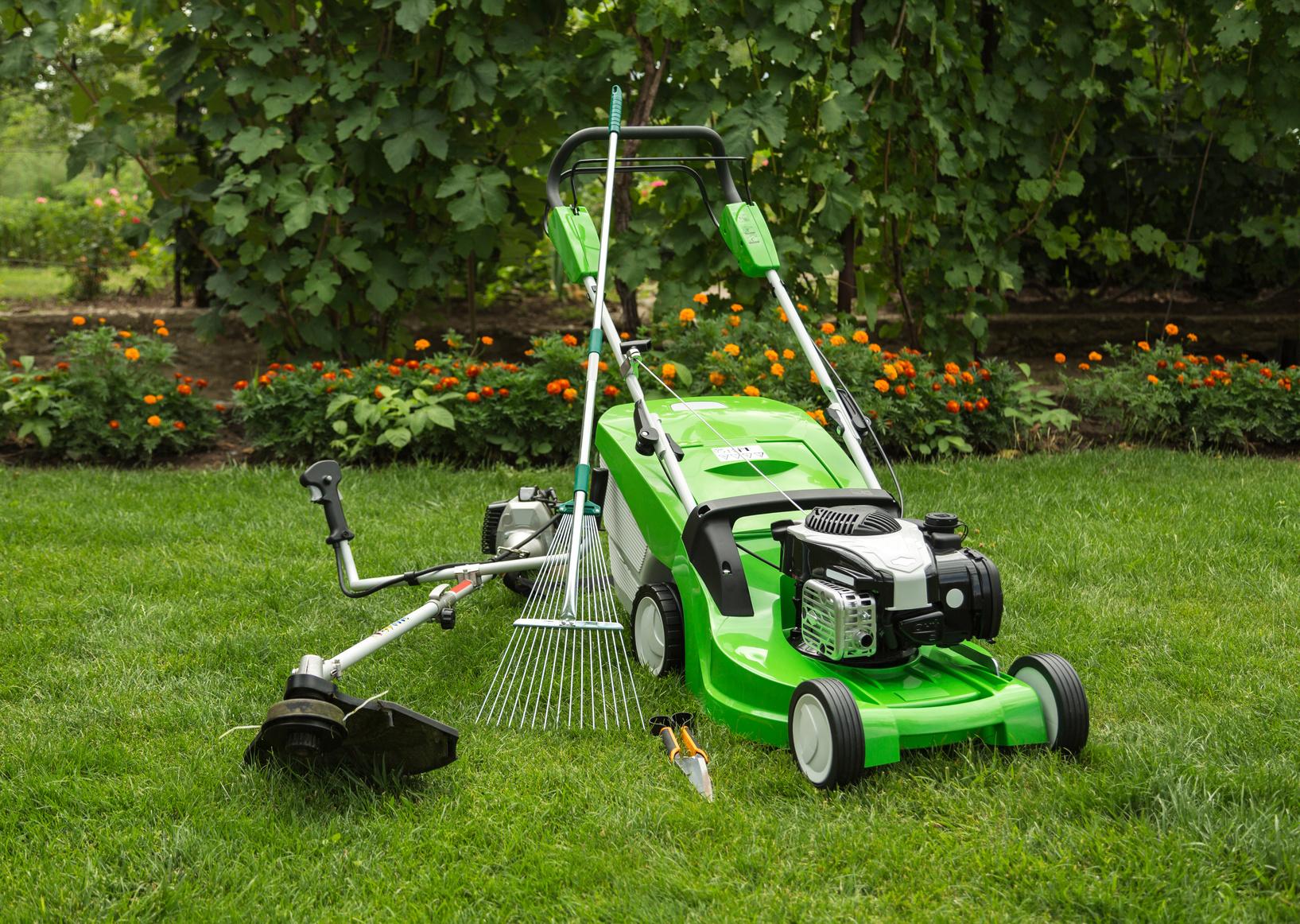 Rasenpflege nach dem Winter