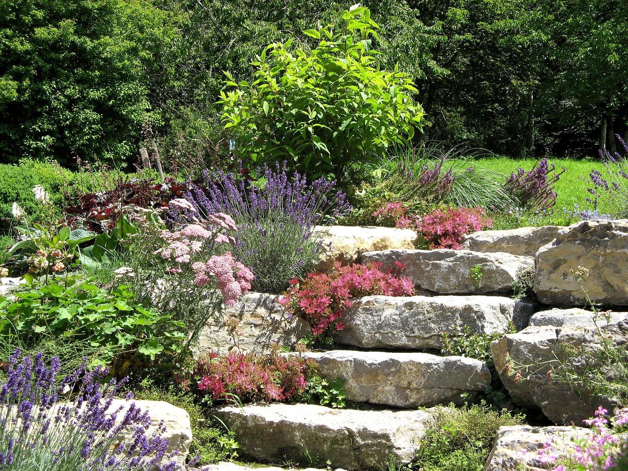 Steingarten anlegen - Tipps und Ideen
